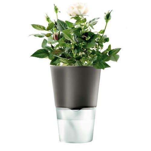 エバソロ evasolo フラワーポット ハーブポット 自動吸水式 植木鉢 グレー Sサイズ 568104 【正規品】